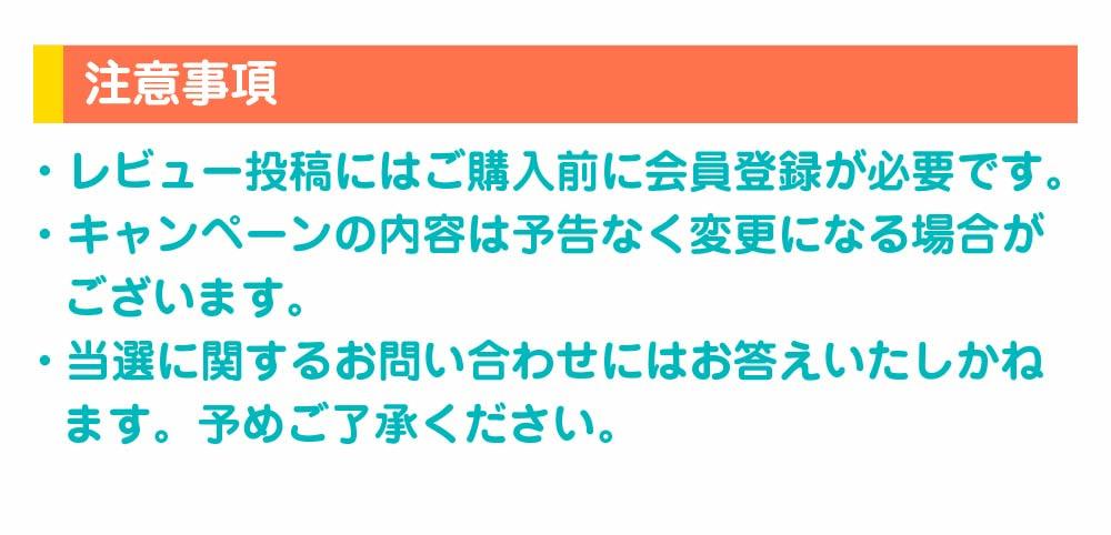 レビュー投稿キャンペーン5
